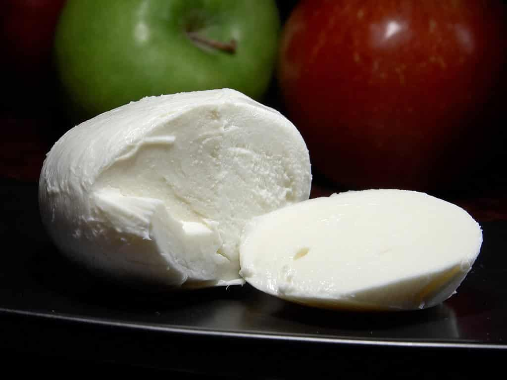 mozarella is a good way to increase you protein intake