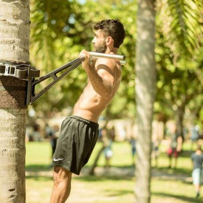 pull up bar tree mount